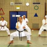 Erwachsene-Karate-in-Düsseldorf-Sakura-Kai-18