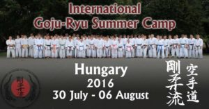 Karate Trainingslager Sommercamp 2106
