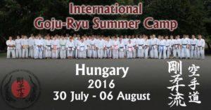 Karate Trainingslager Sommercamp 2106